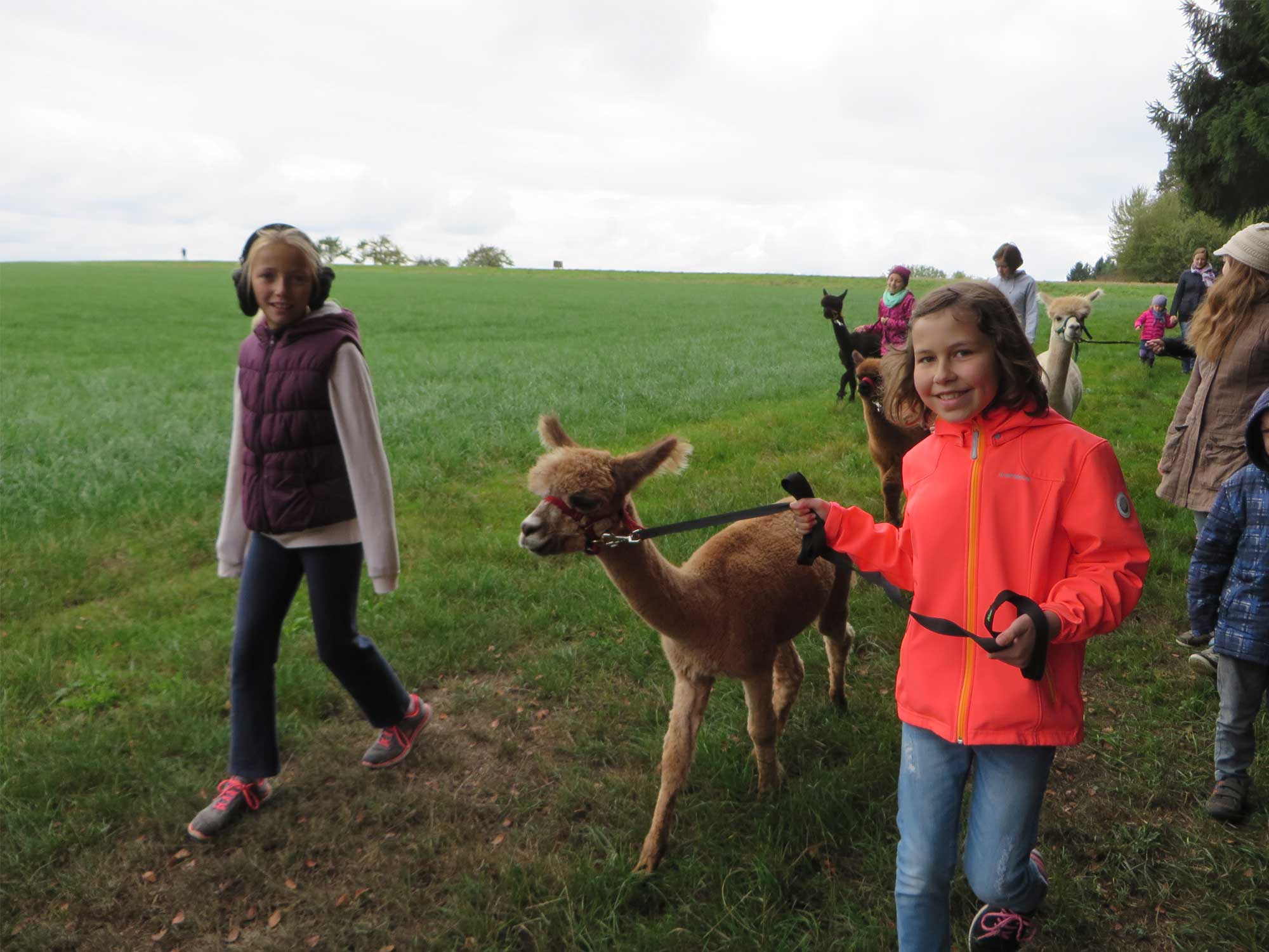 Gemeindefreizeit in Bad Liebenzell Maisenbach – ein voller Erfolg!